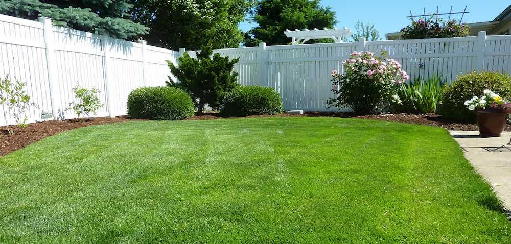 Lawn Fertilizer Company Colorado Springs Wayne Russell